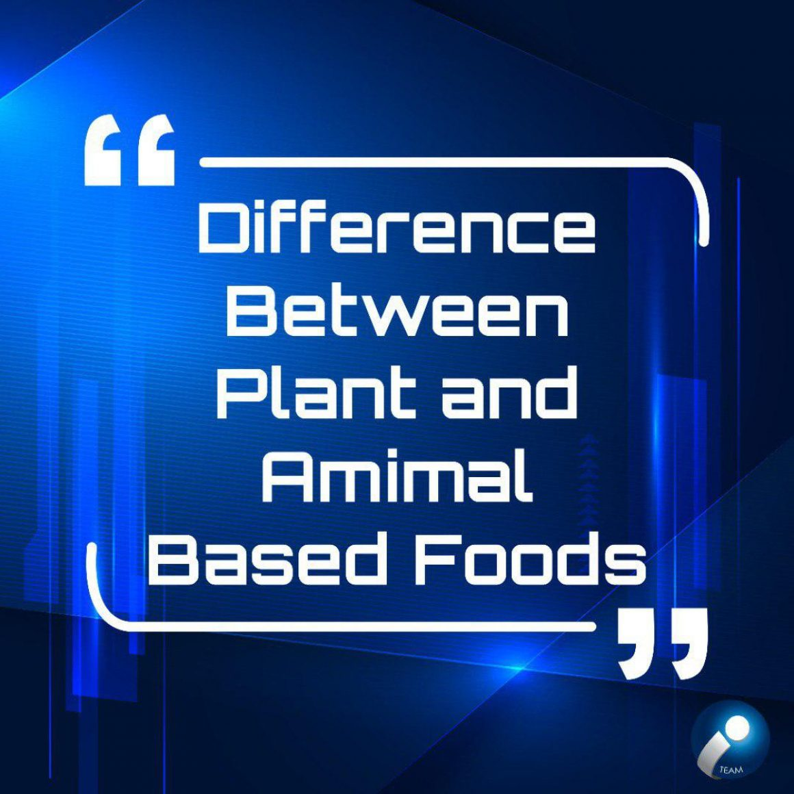 difference-between-plant-animal-based-food-english